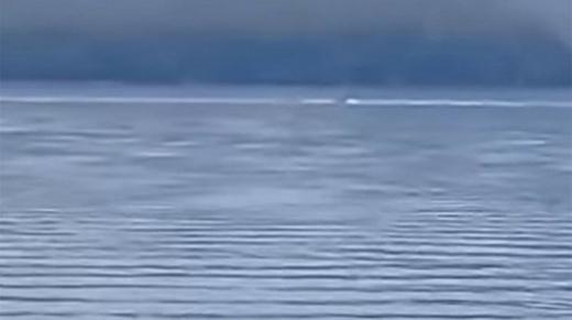 Video: Pescaban en el lago Nahuel Huapi y apareció una extraña criatura